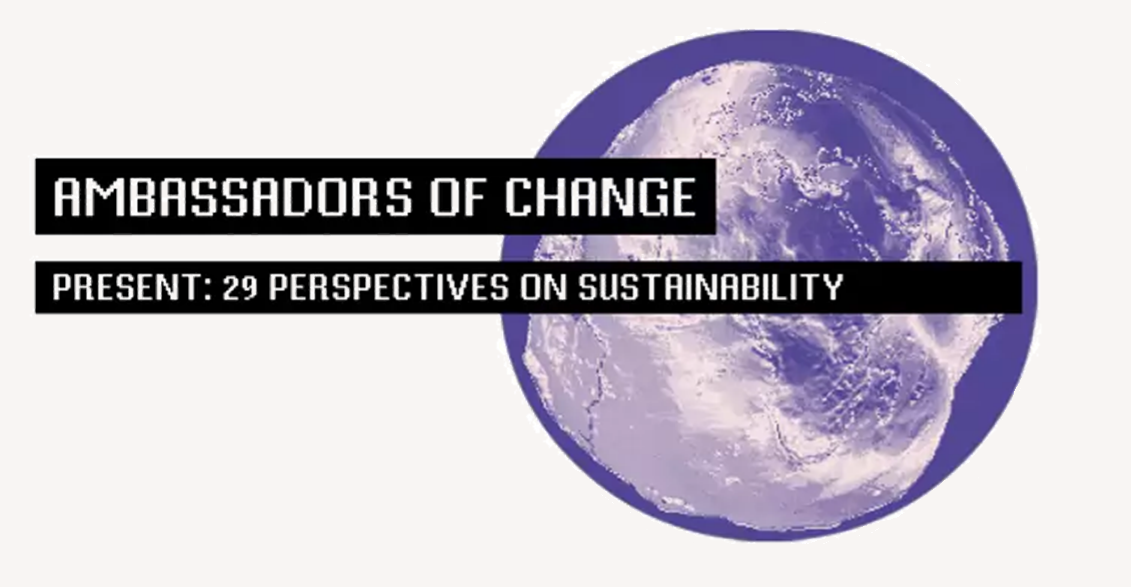 29 Perspectives on Sustainability